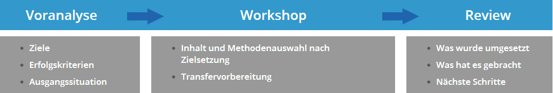 Voranalyse Workshop Review